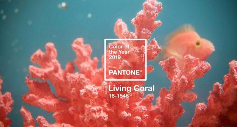 pantone 2019 arrecife coral